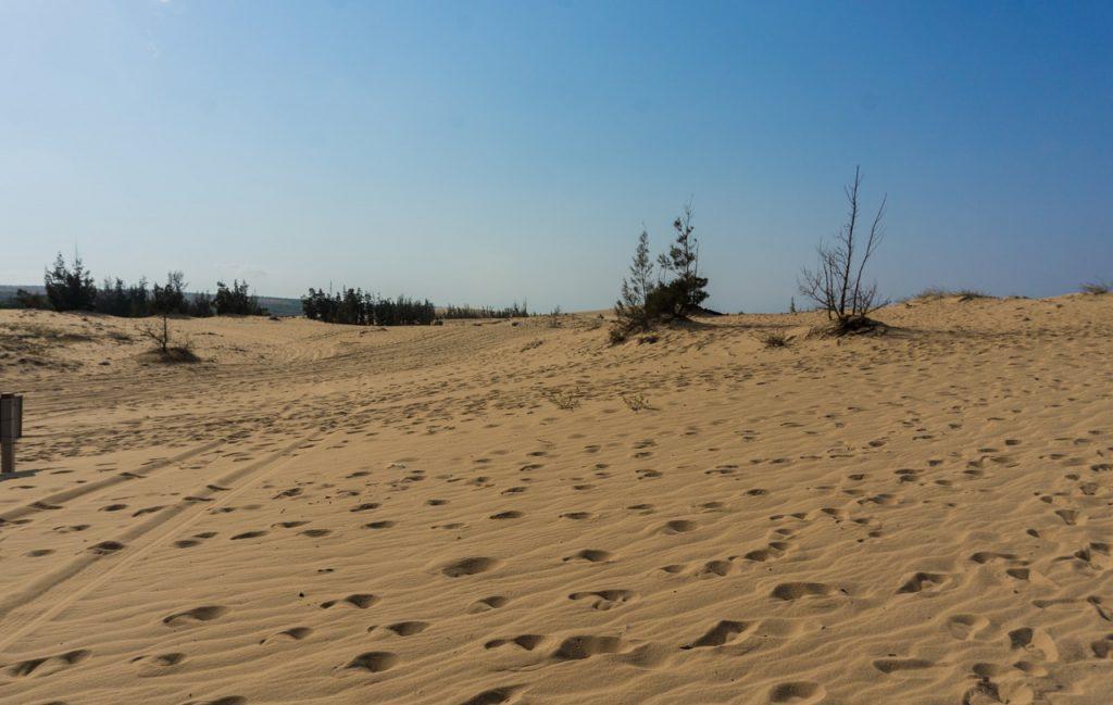 Viajes a Namibia con Temps doci